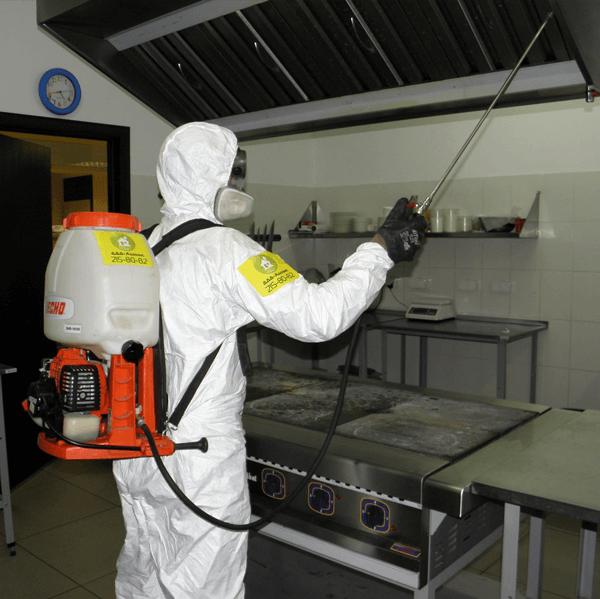Дезинфектор обрабатывает кухонное помещение