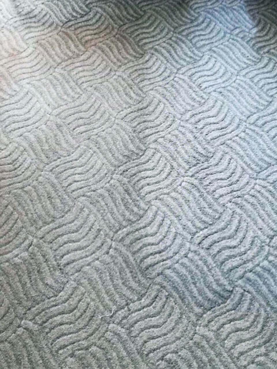 Фрагмент очищенного светлого коврового покрытия