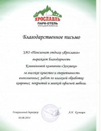 Благодарственное письмо Ярославль
